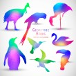 Set of Colorful Geometric Silhouettes Birds — Stock Vector