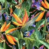 Tropical seamless pattern with exotic flowers — Stock Photo