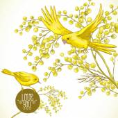 Sprig of Mimosa and Yellow Bird, Spring Background — 图库矢量图片