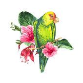 蓝色的浆果,粉红色的热带花朵和绿鹦鹉水彩异国复古卡 — 图库矢量图片