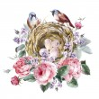 Classical watercolor floral vintage greeting card with rose birds nests and feathers — Stock Photo #79256864