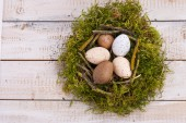 Green nest with eggs — Stock Photo