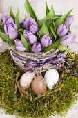 Lilac bunch of tulips — Stock Photo