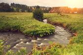 Creek in the green field — Stock Photo