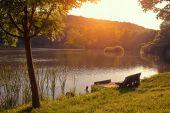 Rama en el muelle cerca del lago — Foto de Stock