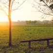 Bench in the park at sunset — Stock Photo #70271491