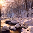 Winter creek in forest — Stock Photo #70271665