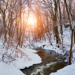 Winter creek in forest — Stock Photo #70271749