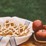 Delicious apple cake — Stock Photo #70271991