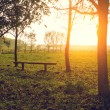 Bench in the park at sunset — Stock Photo #70273025