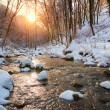 Winter creek in forest — Stock Photo #70274173