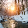 Winter creek in forest — Stock Photo #70274469