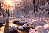 Winter creek in forest — Stock Photo