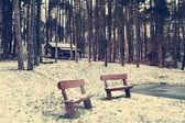 Wooden benches in winter park — Stok fotoğraf
