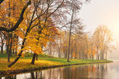 Autumn lake in the park — Стоковое фото