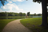 Footpath in the green park — Stock Photo