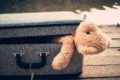 Teddy bear in bag — Stock Photo
