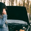 Woman with brown hair near the car — Stock Photo #75393247