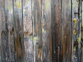 Old hard wood plank background — Stock Photo