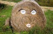 Hay bale in form of funny face — Stock Photo
