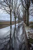 降雪の後の道路 — ストック写真