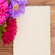 Freshly cut asters on wooden background — Stock Photo #52552815