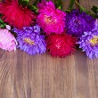 Freshly cut asters on wooden background — Stock Photo #52552823