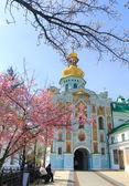 在春天盛开的樱花与基辅大教堂 — 图库照片