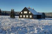 Frozen cottage — Stock Photo