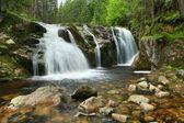 在易北河上的瀑布 — 图库照片