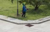 Worker use lawnmower to trim grass lawn — Zdjęcie stockowe