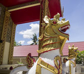 Golden lion statue — Stock Photo