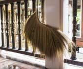 Asian broom — Stock Photo