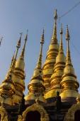 Thailand golden pagoda — Stok fotoğraf