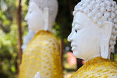 Left side of white buddha statue — Stock Photo