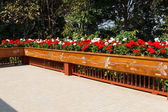 Flowerbed decorating on the terrace — Stock Photo
