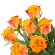 Yellow with red roses isolated — Stock Photo #59017907