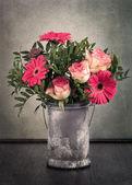 Beautiful gerbera flower — Stock Photo