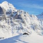 Grindelwald, Switzerland — Stock Photo #53405611