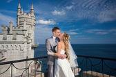 Gelukkige bruid en bruidegom zijn knuffelen — Stockfoto