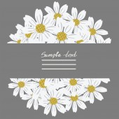 Vector picture with flowers of chamomile — Stock Vector