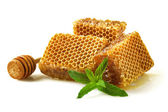 Honeycomb with a sprig of mint. — Stock fotografie