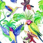 植物区系的热带花朵和小鸟 — 图库照片