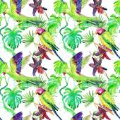 Flora tropical flowers and birds — Stock Photo