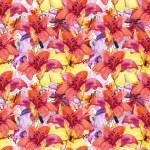 Beautiful Lily Flowers — Stock Photo #54910327