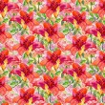 Beautiful Lily Flowers — Stock Photo #54911363