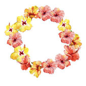 Greeting decoration wreath with hibiscus flowers — Stock Photo