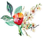 美丽的粉红色花 — 图库照片