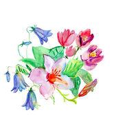 όμορφο ροζ λουλούδι — Φωτογραφία Αρχείου