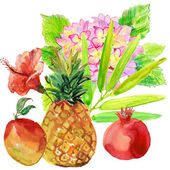 Watercolor fruits, flowers — Stock Photo